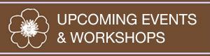 Workshops + Events